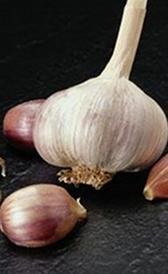 carbohidratos del ajo