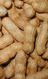 cacahuete, alimento rico en yodo y vitamina B7