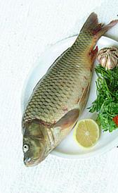 carpa, alimento rico en vitamina B5 y potasio