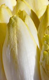 endivias, alimento rico en vitamina A y vitamina B9