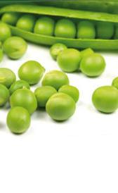 guisante verde, alimento rico en vitamina C y vitamina B7