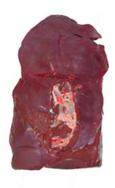 Higado de ternera para el colesterol