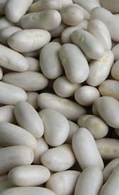 judías blancas, alimento rico en calorías y vitamina B5
