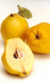 membrillo, alimento rico en vitamina C y fibra