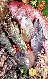 pescados y derivados
