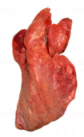 pulmón de ternera, alimento rico en zinc y hierro
