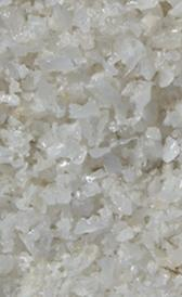 sal común, alimento rico en grasa