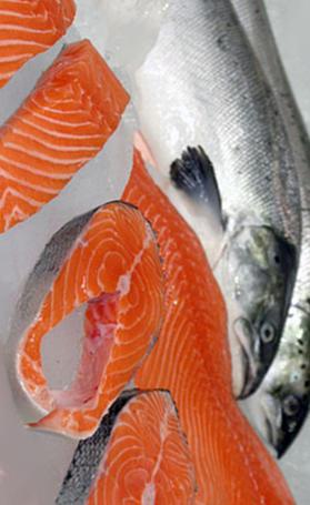 salmón, alimento rico en vitamina B7 y vitamina B12