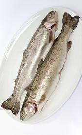trucha, alimento rico en vitamina B7 y calcio