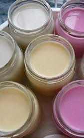 Yogurt entero de sabores